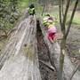 Wir erkunden das Dambachtal